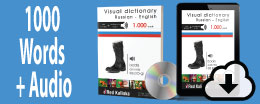 Visual dictionary with audio